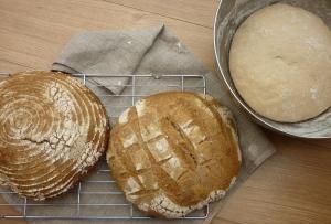 Baking, baking, baking...