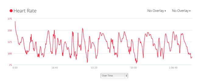 Heart rate dips and peaks a lot.